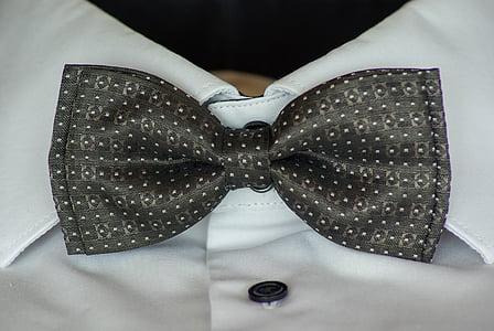 bowtie, shirt, ceremony, col, fashion, bow Tie, elegance