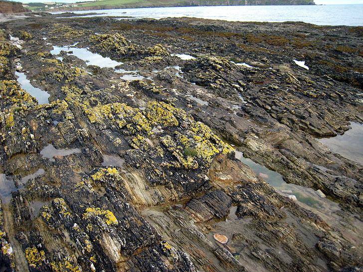 roques, Mar, natural, l'aigua, natura, Costa