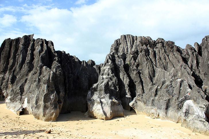 pierres, grandes pierres, objet, pierres mouillées, pierres et les arbres, arbres, grosse pierre