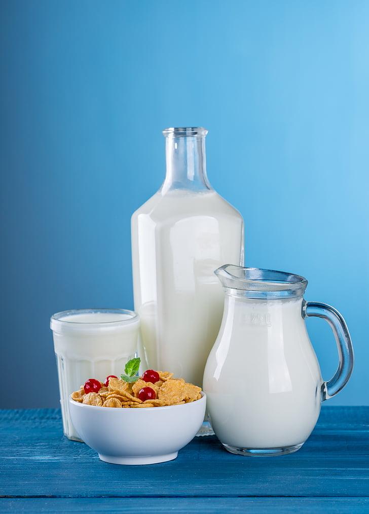 mlijeko, Mliječni proizvodi, bacač, boca, Rustikalni, korisno, bijeli