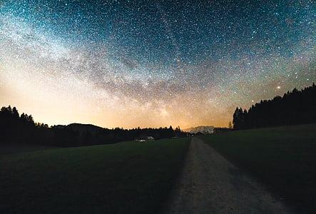 cosmos, camí de terra, natura, nit, silueta, cel, estrelles