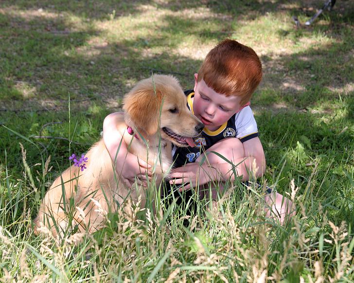 ลูกสุนัข, สุนัข, เด็กชาย, น่ารัก, สัตว์เลี้ยง, เพื่อน, มีความสุข