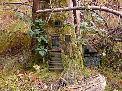 elves, fairies, feenwohnung, forest, fairy tales, wood elves, feenhaus