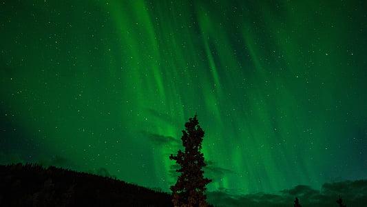 đèn phía bắc, màu xanh lá cây, Aurora, borealis, Thiên văn học, hiện tượng, Aurora borealis