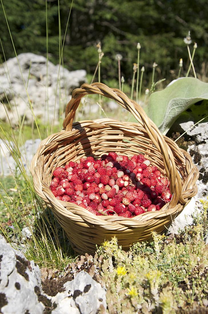 пожеланиях картинки с корзинкой земляники пирога яблоками
