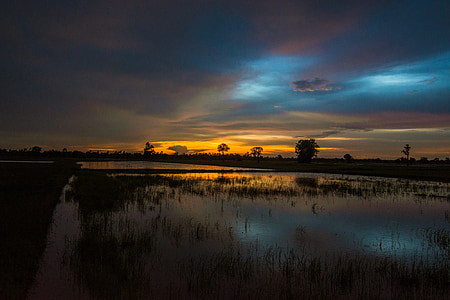 camp, exterior de la casa, Tailàndia, arròs, paisatge, Myanmar Birmània, patètic