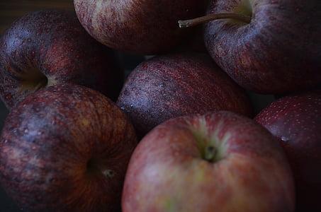 õunad, puu, võimsus, maitse, puu, viljapuud, Viljapuu