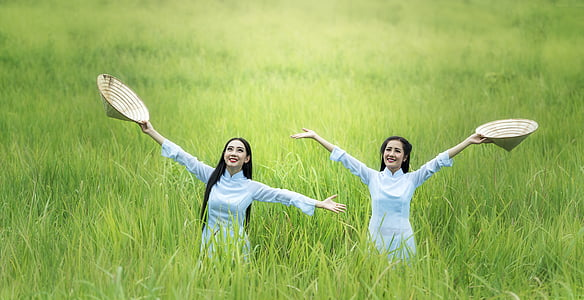 woman, rice, green, countryside, the country, dom, joy