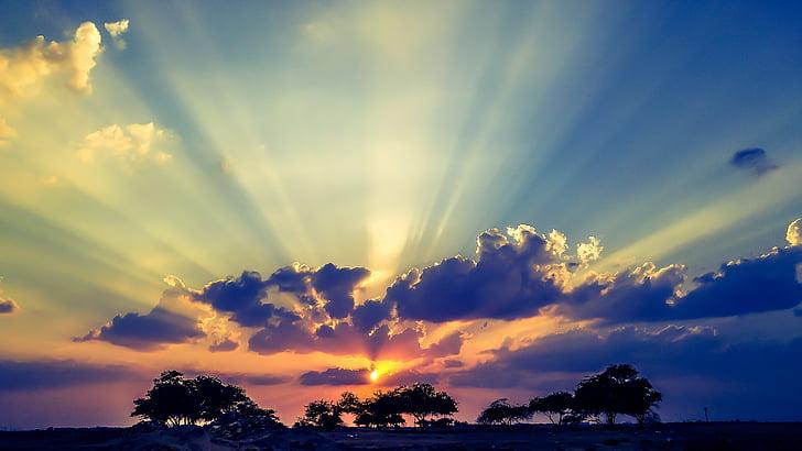 solen, solnedgång, djungel, träd, moln, härlig, naturen