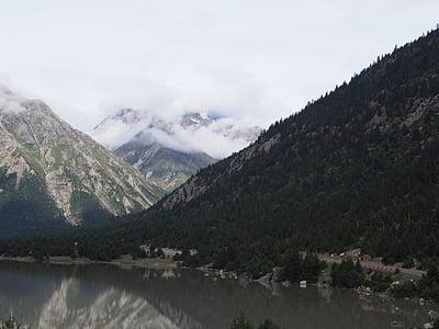 el paisatge, natura, altiplà