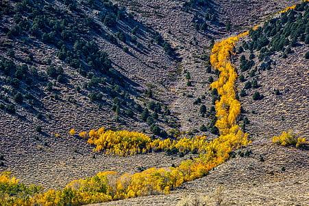 yosemite, national park, california, landscape, scenic, tourism, travel