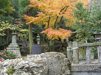 japan, autumn, landscape