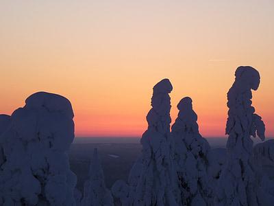 finland, snow, lapland, snow landscape, sunset