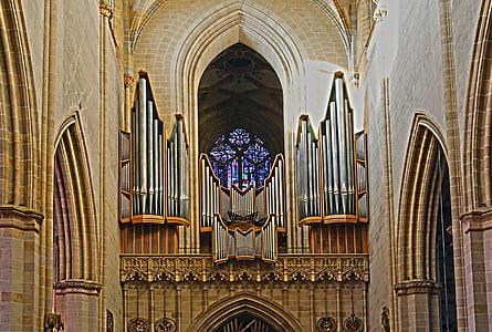 Bažnyčios vargonai, organų, Ulmo katedra, Ulmas, organų švilpukas, priemonė, bažnytinės muzikos
