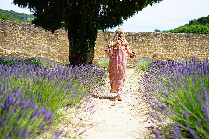 Aromatiniai, žydėti, žiedų, vaikas, lauko, floros, gėlės