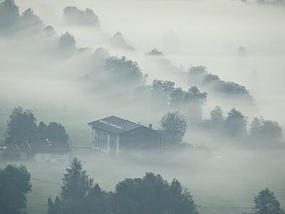 boira, boira, Alba, natura, núvols, estat d'ànim, hores del matí