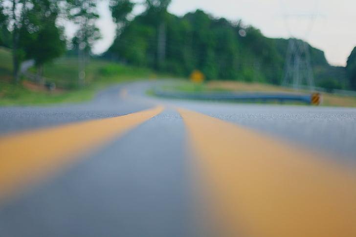 aventura, cidade, estrada, rua, estrada sinuosa, o caminho a seguir, árvore