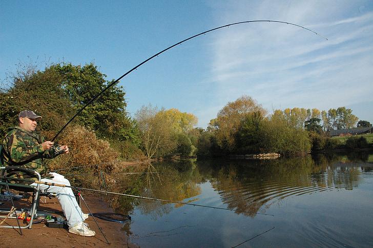 Rybolov, Rybárstvo, Kapor, rybár, jazero, vody, rod