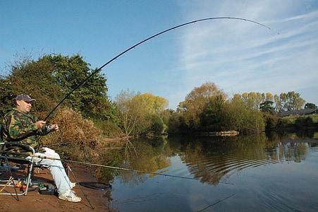pesca, distribució geogràfica, carpa, pescador, Llac, l'aigua, vareta