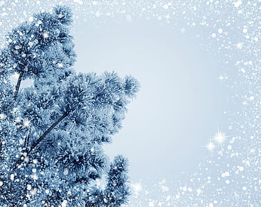 salju, Natal, liburan, embun beku, pohon Natal, latar belakang, mengkilap