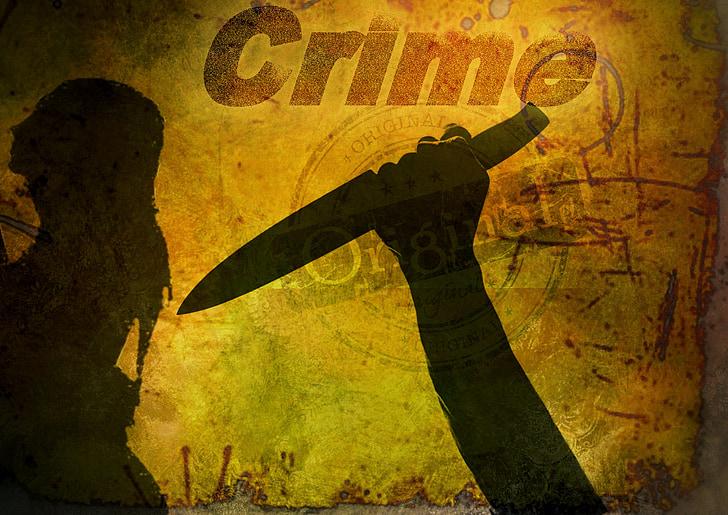 book cover, crime, knife, woman, crime scene, death, gloomy