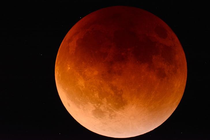 lua, Eclipse, espaço, Astronomia, lunar, céu, Cosmo