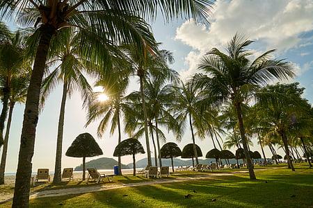 paysage, asiatique, Malaisie, grande, belle, Sky, nature