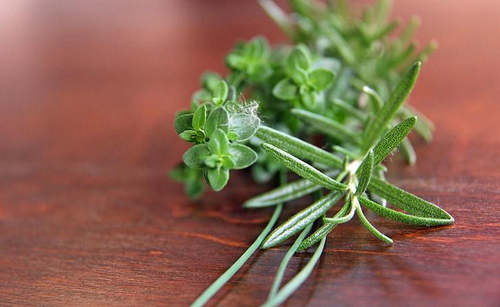 herbes, romaní, julivert, farigola, cibulet, cuina, gurmet