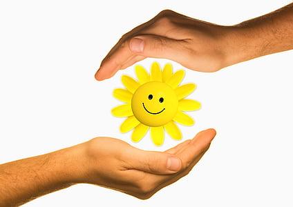 protegir, mans, energia, Ecologia, protecció, sol, viure