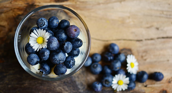 blueberries, dessert, daisy, fruit, fruits, blue, berries