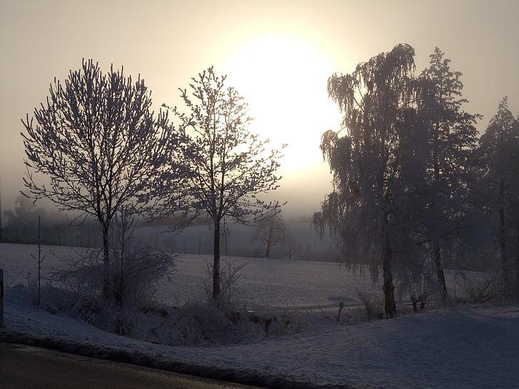 mùa đông, wintry, tuyết