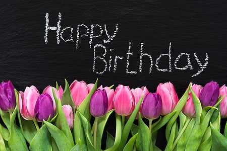 Free slika: rođendan, cvijeće, sretan rođendan, tulipani, Pozdrav,  Čestitka, poklon   Hippopx