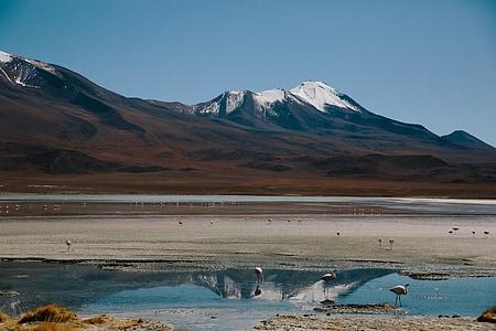 muntanyes, Tundra, Llac, Vall, paisatge, a l'exterior, paisatge