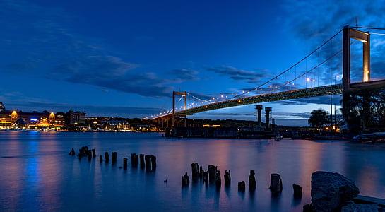 architecture, bridge, city, cityscape, night, river, suspension bridge