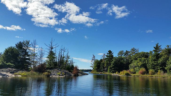 wilderness, nature, river, landscape, scenic