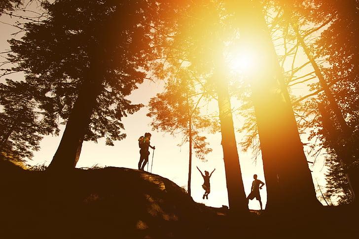 silueta, tres, persones, mitjana, bosc, fotos, sol