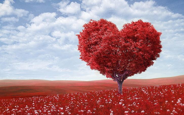 sirds formas, koks, sarkana, ārpus telpām, ziedi, Sv. Valentīna diena, romantisks