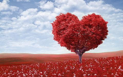 širdies formos, medis, raudona, lauke, gėlės, Valentino diena, Romantiškas