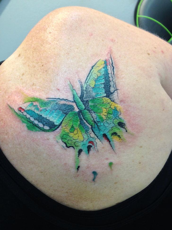tatoo, metulj, izvleček, Akvarel
