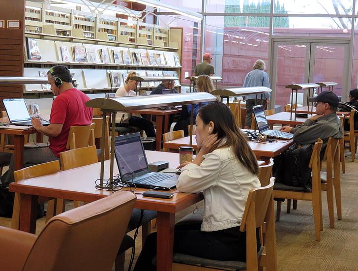library, study, homework, education, studying, school, student