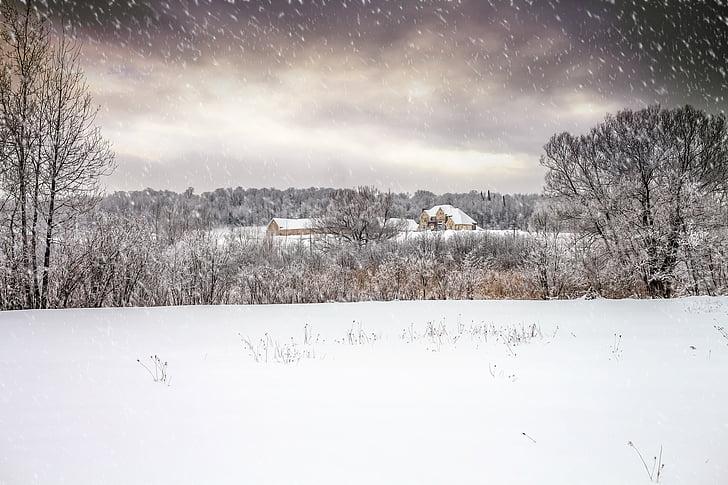 mansion, winter, snow, landscape, fairytale, nature, tree