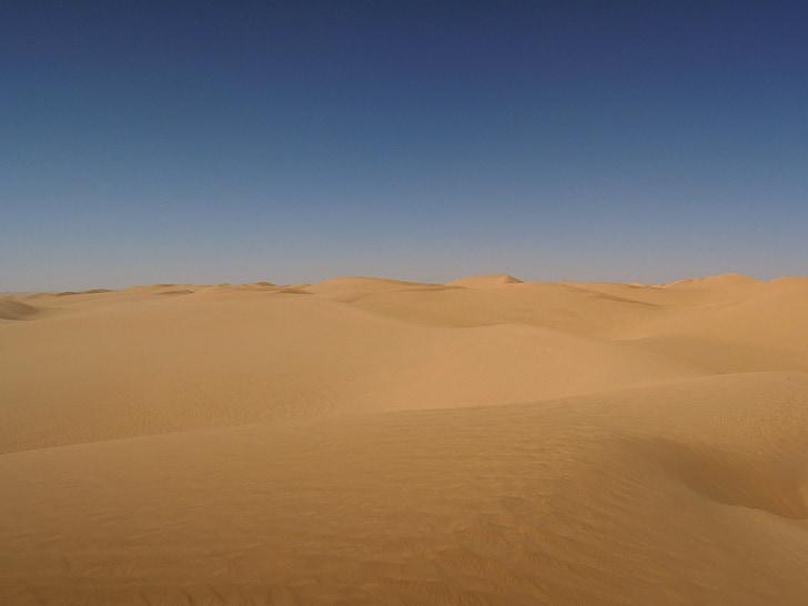 deserto, areia, Argélia, Sahara, Duna de areia, natureza, seca