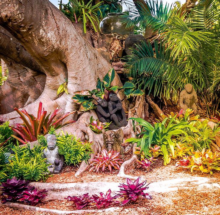 Banyan tree, Shangri-La, Spa, Hotel, Bonita springs, Florida, fredelig