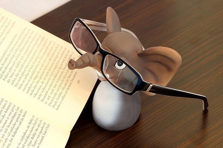 elefante, occhiali, occhiali da lettura, leggere, libro, lenti, occhiali da vista frame