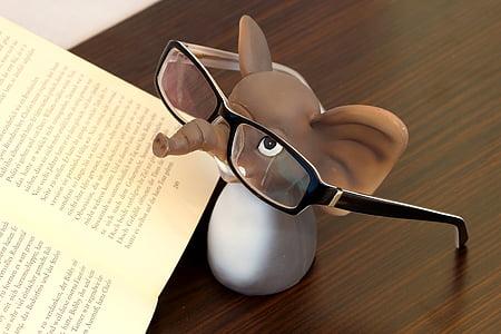 elefant, ulleres, ulleres de lectura, llegir, llibre, lents, marc d'ulleres