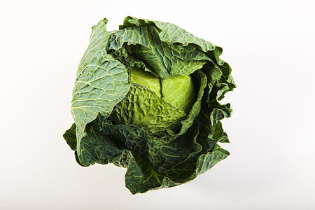verd, cabdell, poder, vegetals, coll, verdures, aliments