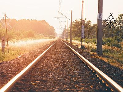 sendero, carril de, cerca de, Exponer, oro, hora, vías del tren