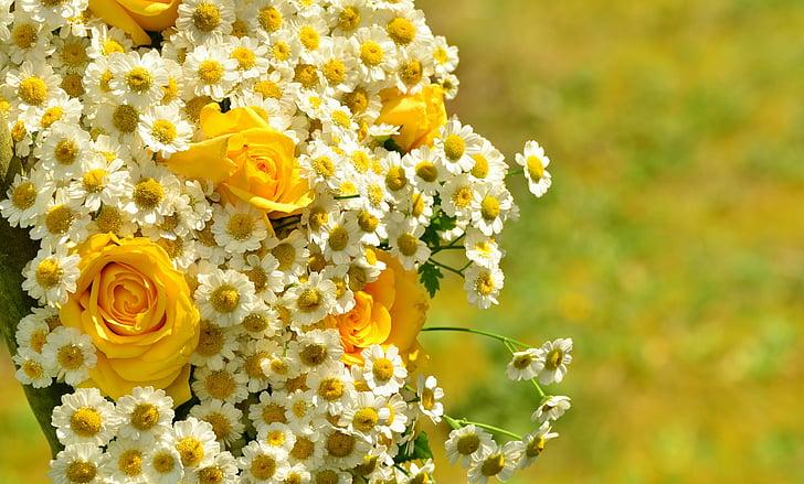 Букет, розы, Желтые розы, ромашки, Желтые цветы, Цветочные приветствие, Букеты