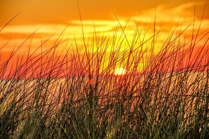 Sunset, Romance, abendstimmung, Sea