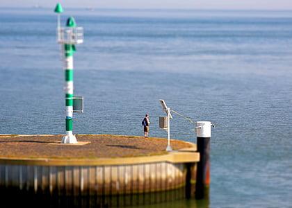 angler, fish, angel, water, sea, lake, fishing rod